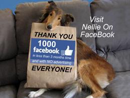 VisitNellieOnFacebook
